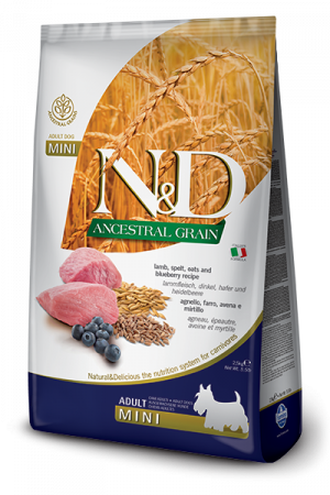 Farmina N&D Ancestral Grain Mini Adult Dog с мясом ягнёнка и черникой