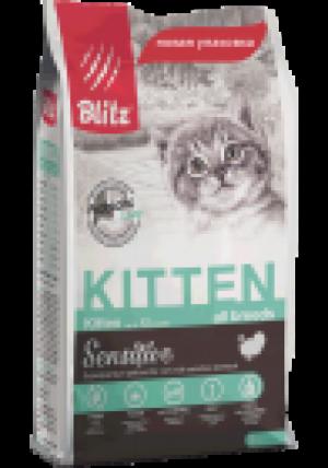 Blitz Kitten