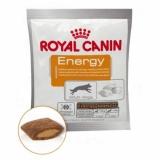 Royal Canin Energy