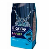 Monge BWild Cat Anchovies