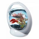 Tetra Betta Ring белый аквариум-шар с освещением LED