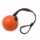 DogLike мяч с лентой
