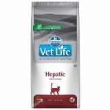 Vet Life Cat Hepatic