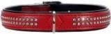 Hunter Smart ошейник для собак Modern Kroko Deluxe 55 (44-50 см) кожзам лаковый 2 ряда страз