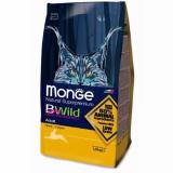 Monge BWild Cat Hare